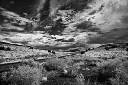 Arizona 2011